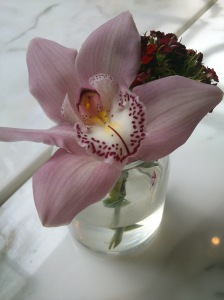 Not anything edible, but this flower in a jar was decorating our table. I thought it was very pretty!