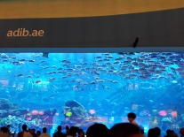 The famous Dubai Aquarium. Just a picture from the outside.